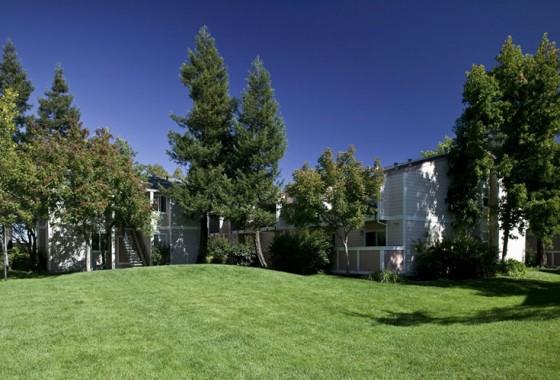 Vineyard-Gardens_Santa-Rosa,-CA